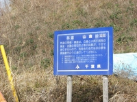 Chikura05