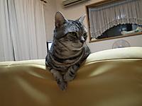 110927_004_640